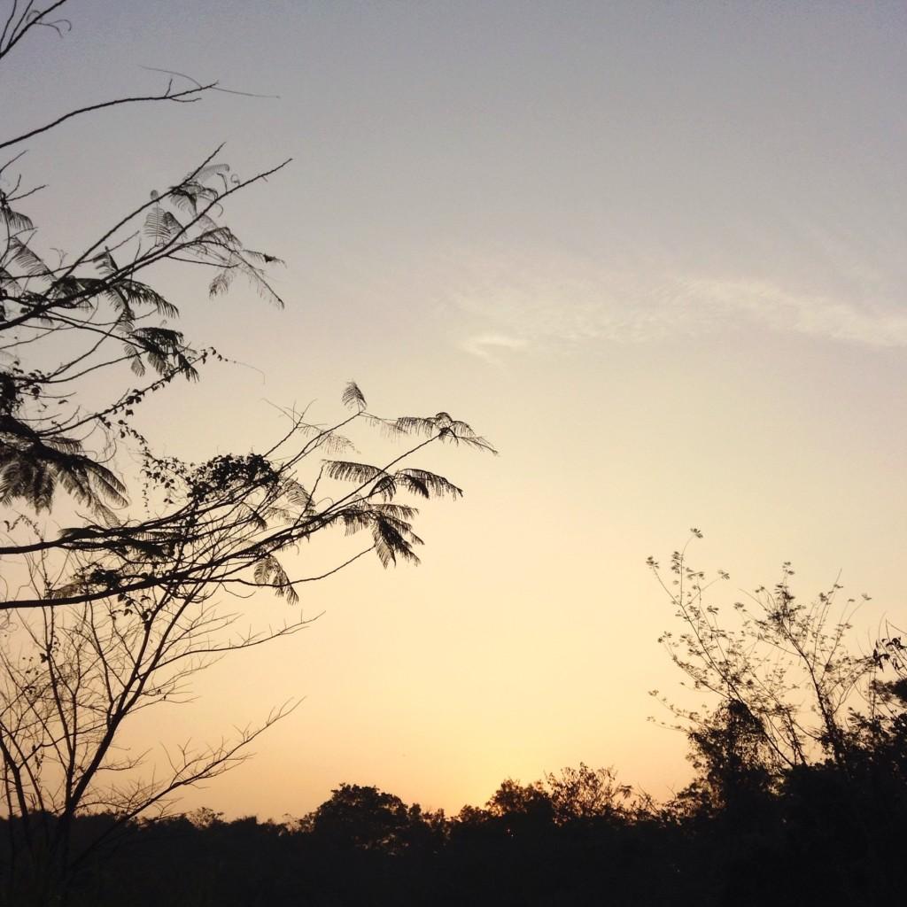 Just before the sun rises at La Mesa Nature Reserve (iPad)
